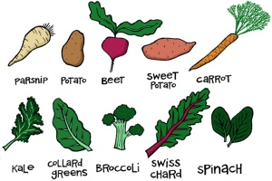 It's the dead of winter, but there are still many local veggies! Here is a helpful chart of what is still available.