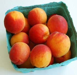 The first of the summer fruit is available at the market this week...Apricots!