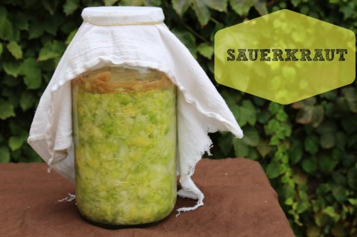 sauerkraut-1024x682