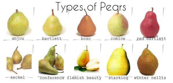 pear types